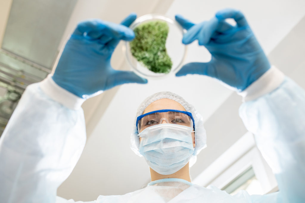 photo of scientist in lab